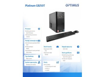 OPTIMUS Platinum GB250T G4600/4GB/2TB+120/W10H